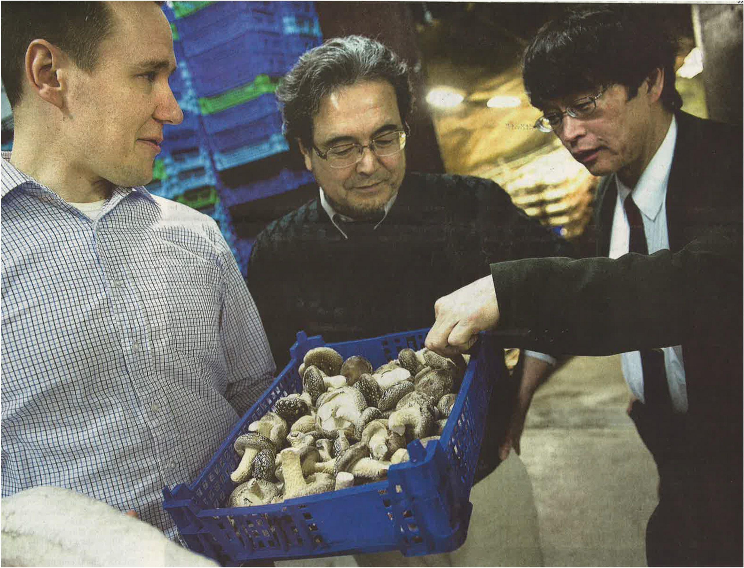 シイタケの種菌提供と生産技術指導